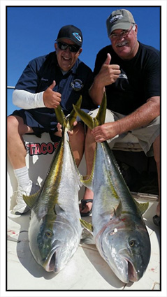 Double Header Yellowtail Trophy's