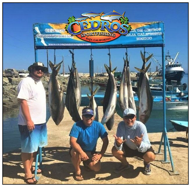 Cedros sportfishing baja califonia mexico for San diego sportfishing fish counts